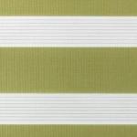 blassgrün + weiß + Linien