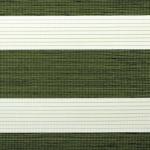 farngrün + weiß + Linien