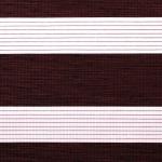 rotbraun + weiß + Linien