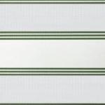 weiß + lichtgrau + laubgrüne Linien