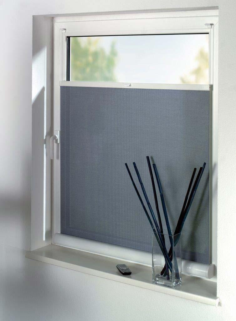 sichtschutz rollo mit durchblick direkt vom hersteller zum. Black Bedroom Furniture Sets. Home Design Ideas